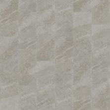 Shaw Floors Home Fn Gold Ceramic Serenity 12×24 Light Grey 00500_TGJ90