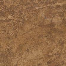 Shaw Floors Home Fn Gold Ceramic Hillside 13×13 Foothills 00700_TGL70