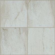 Shaw Floors Home Fn Gold Ceramic Antiquity 8×8 Chrome 00100_TGN57