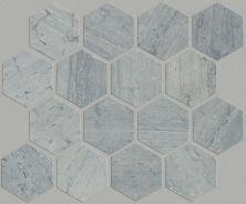 Shaw Floors Home Fn Gold Ceramic Estate Hexagon Mosaic Blue Grigio 00550_TGN87