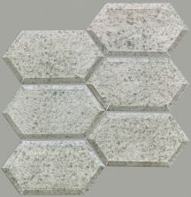 Shaw Floors Toll Brothers Ceramics Venus Hex Mosaic Antique Silver 00500_TL05C