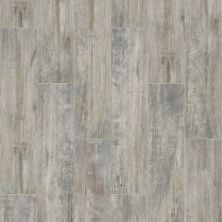 Shaw Floors Toll Brothers Ceramics Ventura 8×36 Ash 00500_TL08B