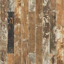 Shaw Floors Toll Brothers Ceramics Sleepy Hollow 6×36 Poplar 00670_TL26B