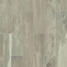 Shaw Floors Toll Brothers Ceramics Mojave 8×48 Latte 00570_TL28B