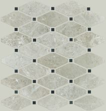 Shaw Floors Toll Brothers Ceramics Hamptons Diamond Plsh Mosaic Ritz Grey 00500_TL48B