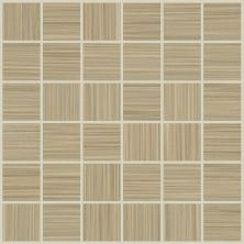 Shaw Floors Toll Brothers Ceramics Parade Mosaic Poplin 00200_TL69C