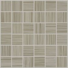 Shaw Floors Toll Brothers Ceramics Parade Mosaic Twill 00500_TL69C