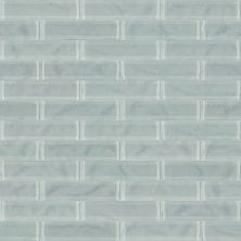 Shaw Floors Toll Brothers Ceramics Principal 3×12 Artisan Glass Shadow 00550_TL73B