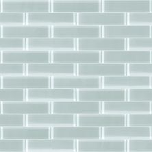 Shaw Floors Toll Brothers Ceramics Principal 3×12 Glass Tile 2 Cloud 00500_TL74B