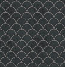 Shaw Floors Toll Brothers Ceramics Geoscapes Fan Black 00555_TL86A