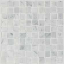 Shaw Floors Toll Brothers Ceramics Estate  Basketweave Mo Bianco Carrara 00150_TL86B