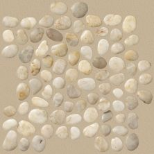 Shaw Floors Toll Brothers Ceramics River Rock Honed Pearl White 00100_TLL65