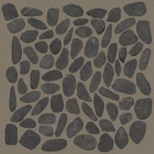 Shaw Floors Toll Brothers Ceramics River Rock Honed Volga Black 00900_TLL65