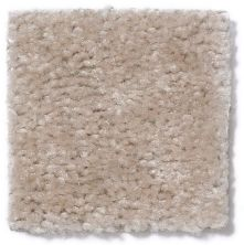 Shaw Floors Panama (s) Misty Beige 17101_TR017