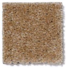 Shaw Floors Panama (s) Soft Camel 17791_TR017
