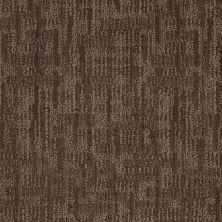 Anderson Tuftex Value Collections Ts148 Chinchilla 00579_TS148