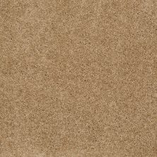 Anderson Tuftex Value Collections Ts247 Oak Plank 00274_TS247