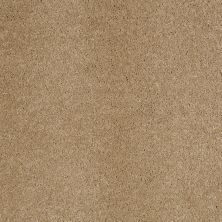Anderson Tuftex Value Collections Ts248 Maple Granola 00174_TS248