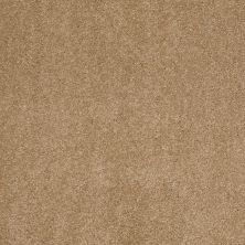 Anderson Tuftex Value Collections Ts248 Oak Plank 00274_TS248