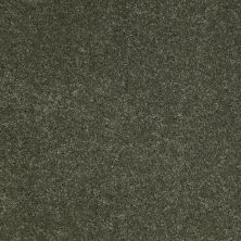 Anderson Tuftex Value Collections Ts248 Bay Leaf 00345_TS248