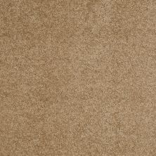 Anderson Tuftex Value Collections Ts248 Toast Tan 00724_TS248