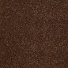Anderson Tuftex Value Collections Ts248 Rocky Road 00778_TS248