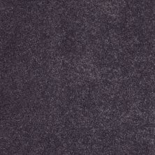 Anderson Tuftex Value Collections Ts248 Soulful Purple 00996_TS248
