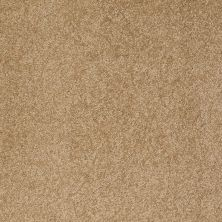Anderson Tuftex Value Collections Ts249 Oak Plank 00274_TS249
