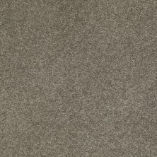 Anderson Tuftex Value Collections Ts249 Steel Wool 00556_TS249