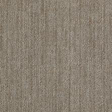 Anderson Tuftex Value Collections Ts366 Demure Taupe 00573_TS366