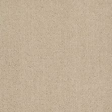 Anderson Tuftex Value Collections Ts401 Champagne 00110_TS401