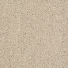 Anderson Tuftex Value Collections Ts401 Gilded Ivory 00120_TS401