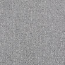Anderson Tuftex Value Collections Ts401 Gray Tint 00532_TS401