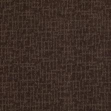 Anderson Tuftex Value Collections Ts401 Dark Earth 00759_TS401