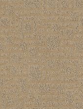 Anderson Tuftex Value Collections Ts441 Cornsilk 00225_TS441