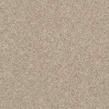 Anderson Tuftex Value Collections Thunder's Roll Sand Dune 00223_TS467