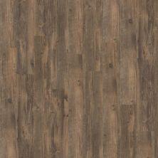 Shaw Floors Vinyl Property Solutions Brava Antico 00747_VE145