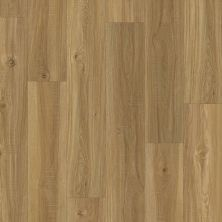 Shaw Floors Resilient Property Solutions Foundation Plank Mellow Oak 00109_VE180
