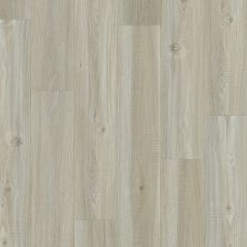 Shaw Floors Resilient Property Solutions Foundation Plank Washed Oak 00509_VE180