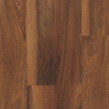 Shaw Floors Resilient Property Solutions Optimum 512c Plus Amber Oak 00820_VE210