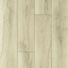 Shaw Floors Vinyl Property Solutions Lazio Plus Tuscany 01004_VE230