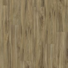Shaw Floors Vinyl Property Solutions Presto 306c Whispering Wood 00405_VE245