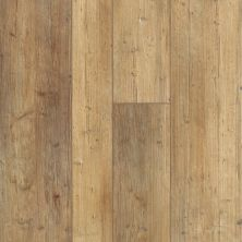 Shaw Floors Resilient Property Solutions Resolute Mix Plus Touch Pine 00690_VE279