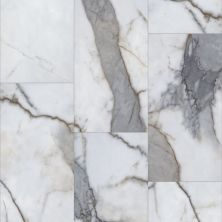 Shaw Floors Resilient Property Solutions Urban Organics Michelangelo Marble 01107_VE280