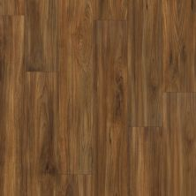 Shaw Floors Resilient Property Solutions Presto Plus Burmese Teak 00604_VE284