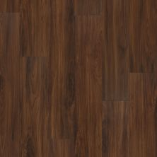 Shaw Floors Resilient Property Solutions Presto Plus Deep Mahogany 00703_VE284