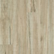 Shaw Floors Resilient Property Solutions Brio Plus Chatter Oak 00295_VE285