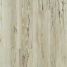 Shaw Floors Vinyl Property Solutions Brio Plus Mineral Maple 00297_VE285