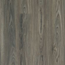 Shaw Floors Resilient Property Solutions Brio Plus Dark Elm 00915_VE285