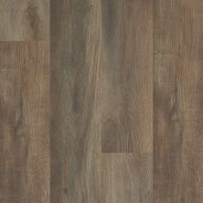 Shaw Floors Resilient Property Solutions Brio Plus Highlight Oak 07061_VE285